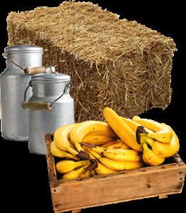 boerderijs_assortiment_banaan_image_extra